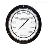 PERMA-CAL压力表108FTM16A21-O