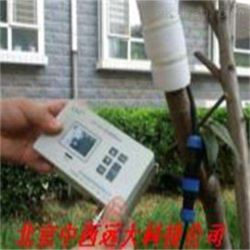 茎流量测定仪 现货