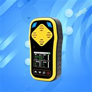 RS-MG41-1建大仁科氧气一氧化碳传感器手持检测仪
