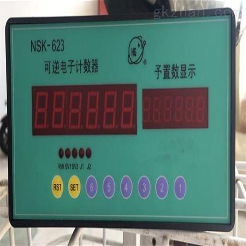 可逆电子计数器 仪表