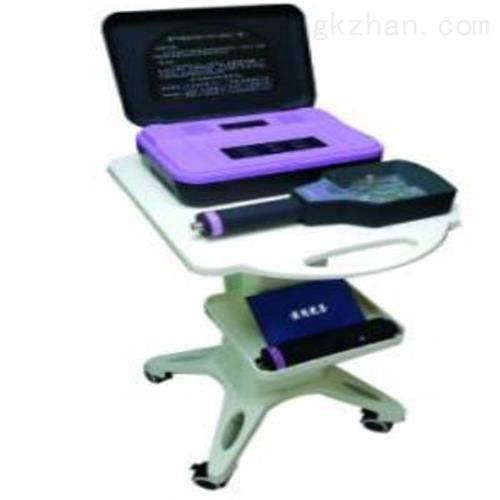 紫外线仪 仪表