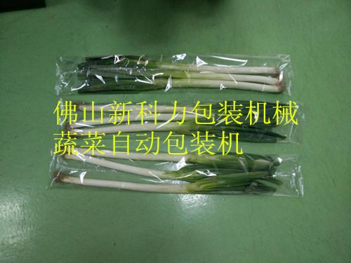 蔬菜大葱2.jpg