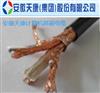 ZR-IA-DJYPVPR22-12*2*1.5本安阻燃型钢带铠装计算机屏蔽电缆